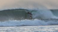 freesurf_tn